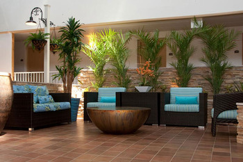 Tropical Oasis at Quality Inn Oceanfront Ocean City.