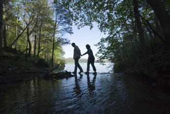 Forest hikes at Stonewater Cove Resort.