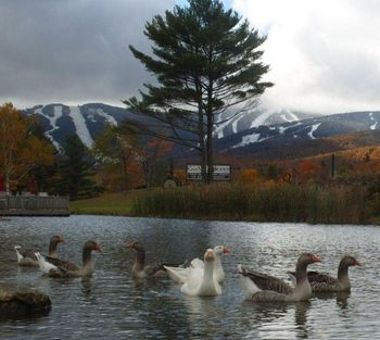 Beautiful lake view at Killington Accommodations.