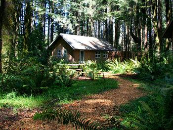 Cabin exterior at WildSpring Guest Habitat.