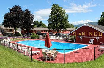 Outdoor pool at Flamingo Resort.