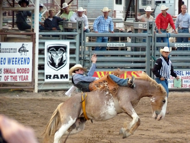 Rodeo near West 1077 Guest Ranch.