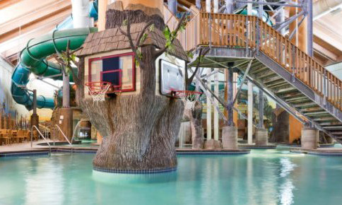 Wild Wood Water Park at Holiday Inn Minneapolis