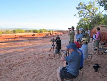 Bird watching at Broome Bird Observatory.