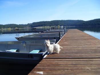 Dock view at Silver Beach Resort.