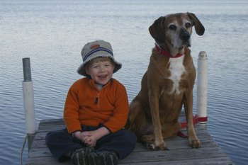 Kid And Dog On Dock at Cozy Bay Resort