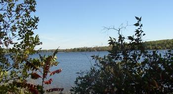 View of lake at Wilderness Resort Villas.