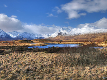 Area surrounding West Highlands.