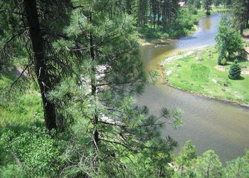 River view at Idaho Cabin Keepers.