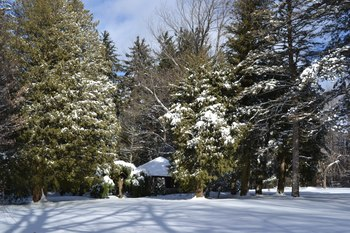 Winter time at Rock Hall Luxe Lodging.