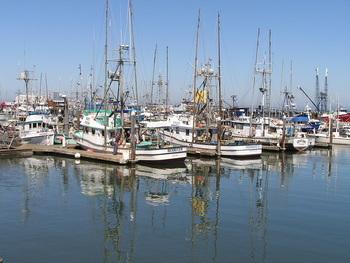 Fishing boats near Grays Harbor Inn & Suites.