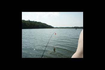 Fishing at Loons Landing at Timberwoods Resort.