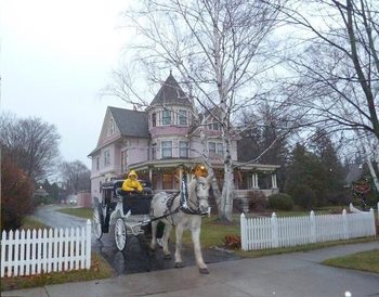 Carriage rides at White Lace Inn.