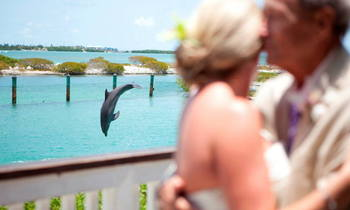 Wedding at Hawk's Cay Resort.