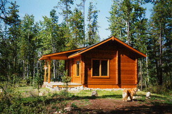 Cabin exterior at Mica Mountain Lodge & Log Cabins.
