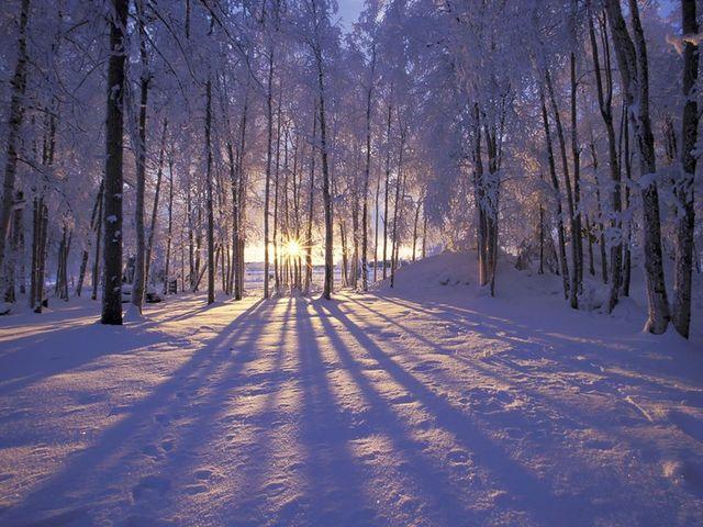 Winter at White Manor Resort.