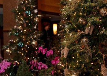 Christmas at The Sofia Hotel.
