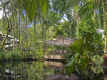 Exterior view of Daintree Eco Lodge and Spa.