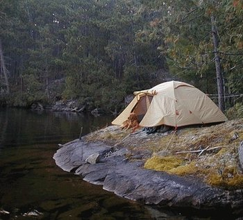 Camping at Moose Track Adventures Resort