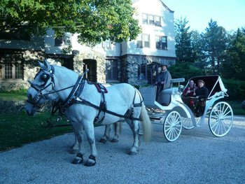 Horse carriage to Rock Hall Luxe Lodging.