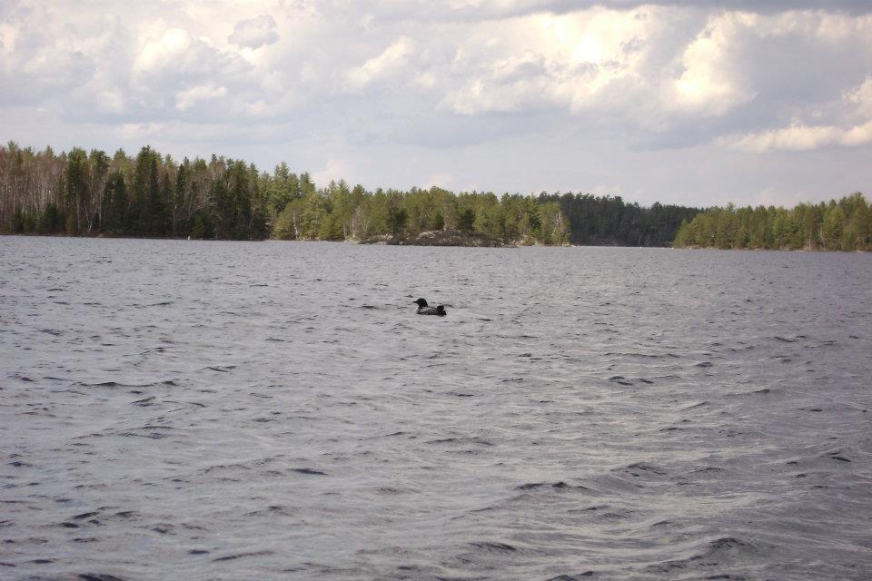 Lake view at Tamarack Resort.