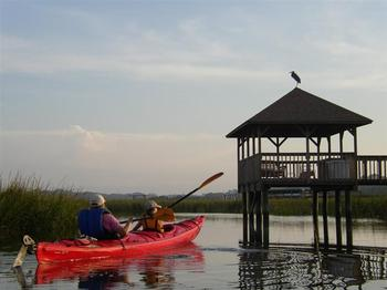 Kayak Tours at The King and Prince Beach Resort