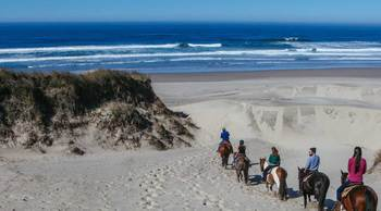 Horseback ride on the beach at Driftwood Shores Resort and Conference Center.