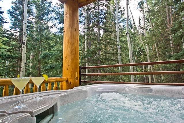 Skyrun Vacation Rentals Telluride Colorado Telluride