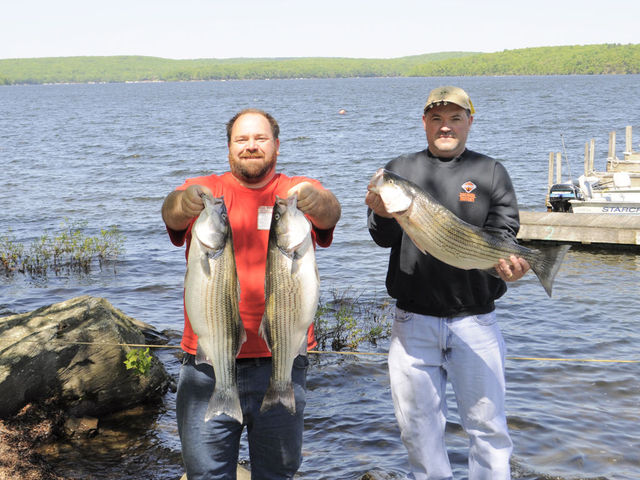 Silver birches hawley pa resort reviews for Best fishing in pa