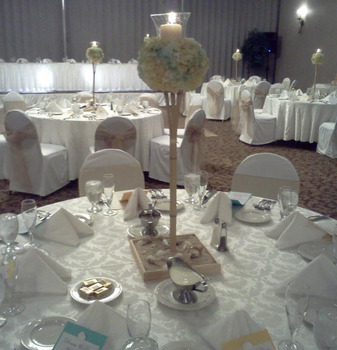 Wedding Reception at Colony South Hotel