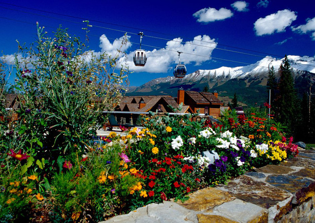 Mountain Lodge Telluride Telluride Co Resort Reviews