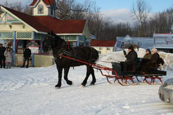 Horse carriage rides at Fern Resort.