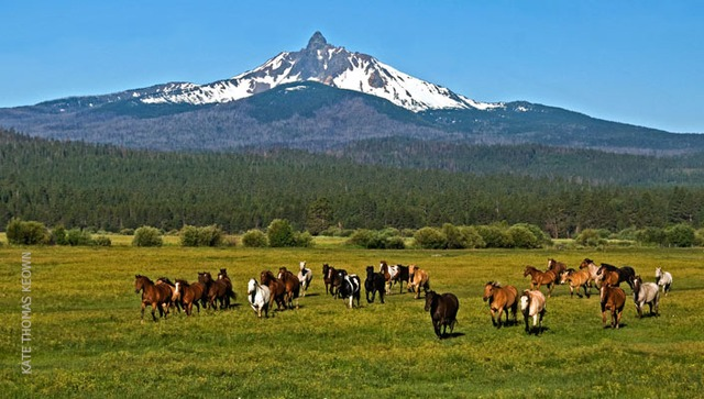 Mountain View at Black Butte Ranch