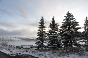 Winter time at Vista Verde Ranch.