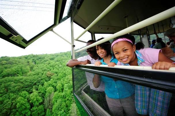 Family on tram near Bear Camp Cabins.