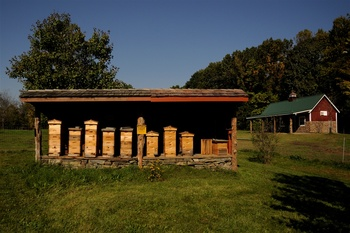 Millstone Farm honey bees at Buttermilk Falls Inn & Spa.