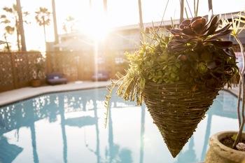 Outdoor pool at Ocean Villa Inn.