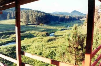 View from at Black Hills Cabins & Motel at Quail's Crossing.