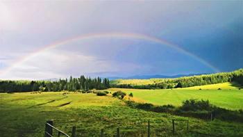 Rainbow at Western Pleasure Guest Ranch.
