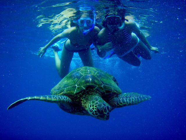 Snorkeling at Lumeria Maui.