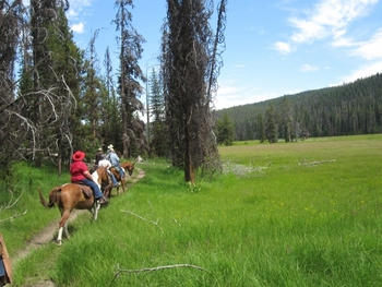 Trail Ride at Silver Spur Outfitters