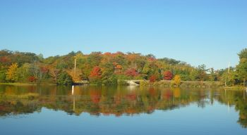 Fall colors at Pitlik's Sand Beach Resort.