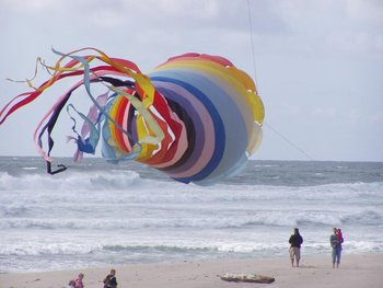 Large kite flying on the beach at Cavalier Beachfront Condominiums.