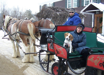 Sleigh Rides at The Mountain Top Inn & Resort