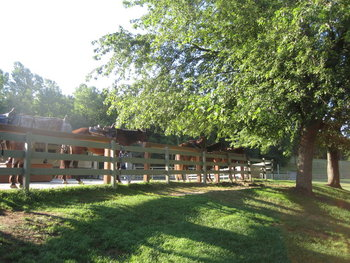 Exterior view at  Rocking Horse Ranch.