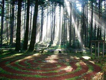 Walking Labyrinth at WildSpring Guest Habitat