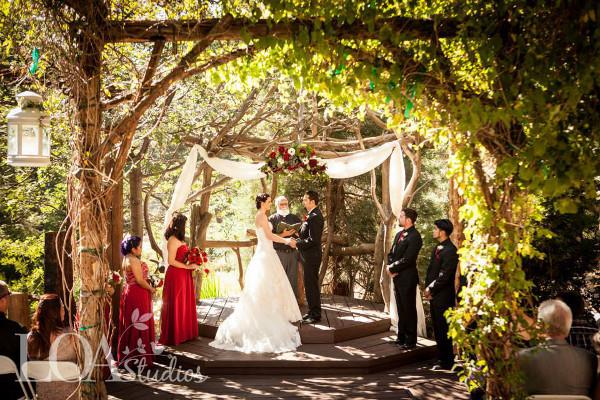 A Forest Escape Where Fairytale Weddings Come True