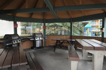 Picnic pavilion at Douglas Fir Resort & Chalets.