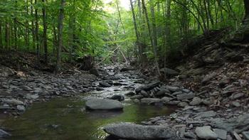 Creek view at Winter Clove Inn.