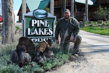 Hunting turkey at Pine Lakes Lodge.